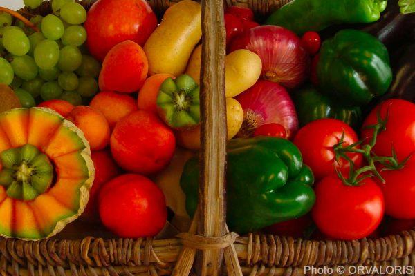 paniers de fruits et légumes avec des kiwi, poivrons, oignons, melon, tomate publié dans le Malin Gourmand