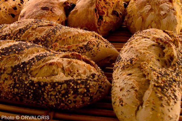 pains spéciaux agrémentés de graines publié dans le Malin Gourmand